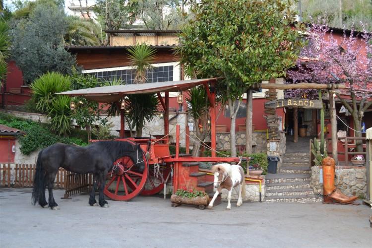Carro e Cavalli - Pizzeria Il Ranch