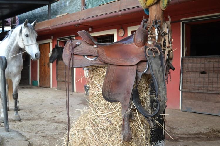 Sella - Il Ranch